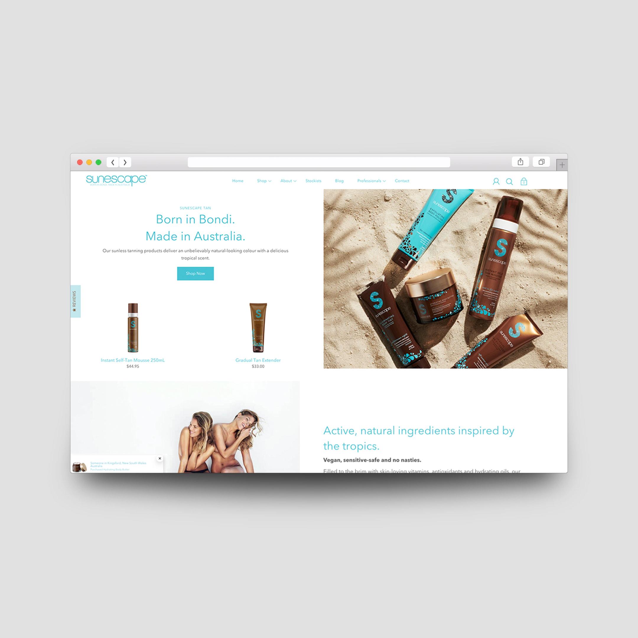 business-website-design-and-development